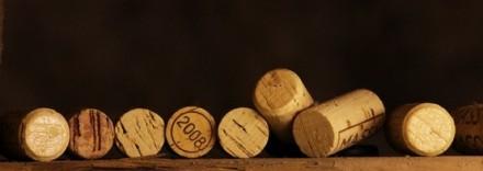 頑張れ、イタリアワイン!! 日本への輸出量は年々(少〜しずつ)アップ。