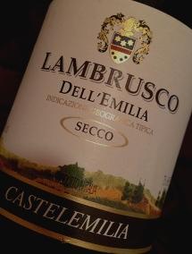 シュワシュワ・・・微炭酸赤ワインのランブルスコを楽しむ夜。