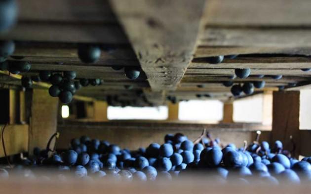 Ripassoという製造方法の赤ワイン。実はアマローネが影の立役者なのです。