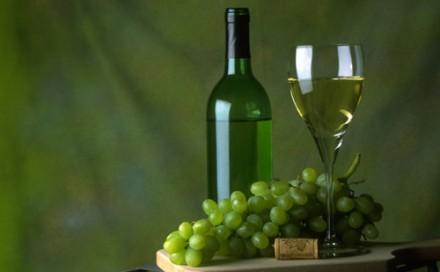 BIOの次はヴィーガン・ワインに注目?これからのトレンドとなるでしょうか。