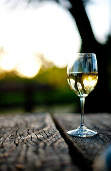 白ワインが美味しい季節。風景とワインのマリアージュにも挑戦。