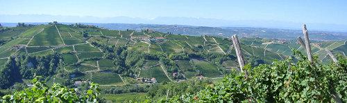 Mango, Terra, Vino, Tradizione – Moscato d'AstiとAsti Docgのイベントです。