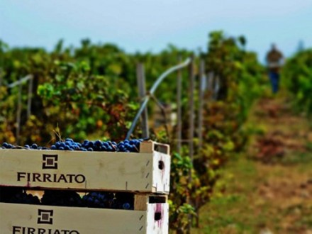 たまには気軽にシチリアのワインと料理を楽しむ夕べ♥