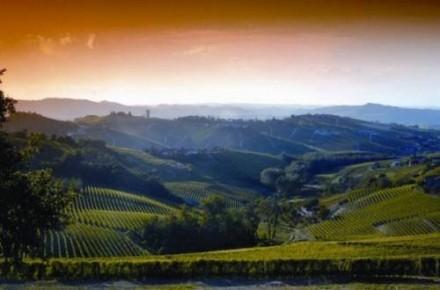 6月の結果待ち。イタリアワイン好きとしてはいいニュースが聞きたい!!
