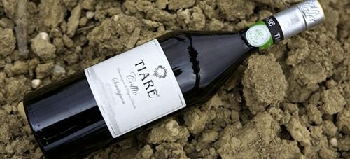 金賞受賞はなんとフリウリのソーヴィニヨン。イタリアワインの快挙です。