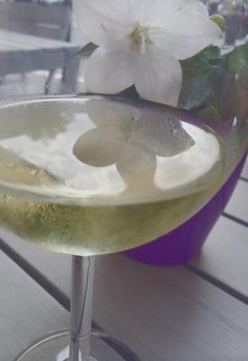 暑い日の喉をうるおす白ワイン。白い花が涼しげです。