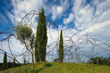 祝100年!フリウリを代表するワイナリー Livio Fellugaの企画です。