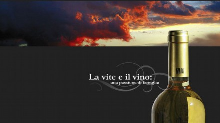 Cantina Gildo・・・コッ リ・オリエンターリ・デル・フリウリ地域のワイナリーです。