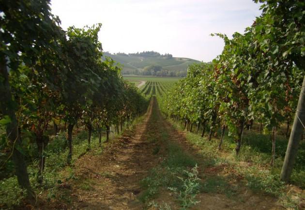 憂鬱な雨の週末。でも美味しい赤ワインでご機嫌のアペリティーヴォ。