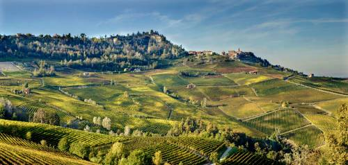 """10 Best Wine Travel Destinations 2015""・・・ピエモンテ州が選ばれました。"